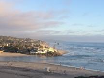 top of bluff dog beach